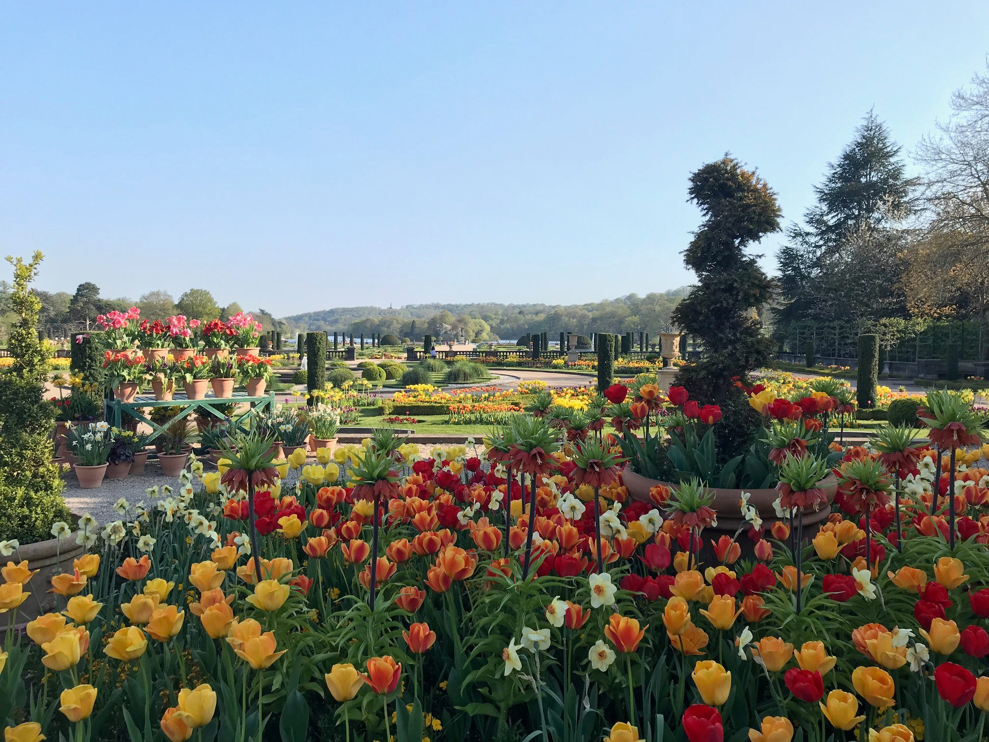 Trenthan Gardens